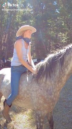 Funny Horse Videos, Funny Horses, Cute Wild Animals, Cute Funny Animals, Horse Girl, Horse Love, Most Beautiful Horses, Animals Beautiful, Cavalo Wallpaper