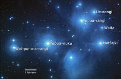 6 simple ways to celebrate Matariki the Maori New Year with your family. There are lots of ways you can celebrate Matariki with your family, and in doing so, start your own family traditions. Here's some ideas to get you started. Space Theme Classroom, Art Classroom, Maori People, Star Constellations, Maori Art, Star Cluster, Family Traditions, Art Lessons, Names