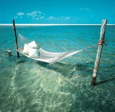 relaxing Island Hammock ┐(˘•˘)┌