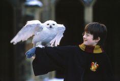 Năm 2001, Daniel Radcliffe đã được biết đến rộng rãi qua vai diễn đầu tay Harry Potter trong loạt phim ăn khách cùng tên. Hình ảnh cậu bé với đôi mắt sáng cùng cặp kính tròn quen thuộc đã đi vào tâm hồn của rất nhiều người hâm mộ loạt phim này.