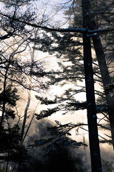 https://flic.kr/p/CAPRUe | Kamikochi | 長野県 上高地   Kamikochi, Nagano Prefecture   Nikon D700 + Planar T*1.4/85 ZF.2