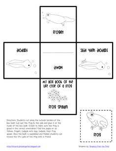 Life Cycle of a Frog Box Book.pdf - Google Drive