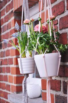 DIY-plantes-suspendues-mon-atelier-déco-via-Nat-et-nature