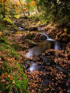 le Rivoal au Nivot, à Lopérec (12 photos) © Paul Kerrien http://toilapol.net #Finistère #Bretagne #automne #rivière