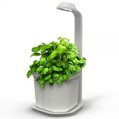 Genie Kitchen Garden : Ce pot de fleur intelligent est aussi décoratif qu'ingénieux. Avec sa lampe intégrée, il diffuse une lumière proche de celle du soleil. Parfait pour accueillir une plante aromatique, Genie Kitchen Garden se décline en plusieurs coloris.