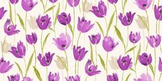 Tulips (31177) - Albany Wallpapers - A pretty all over tulip flower design in bold colours.  Shown here in shades of purple and violet. Please request sample for true colour match.  I WANT THIS WALLPAPER NOW!