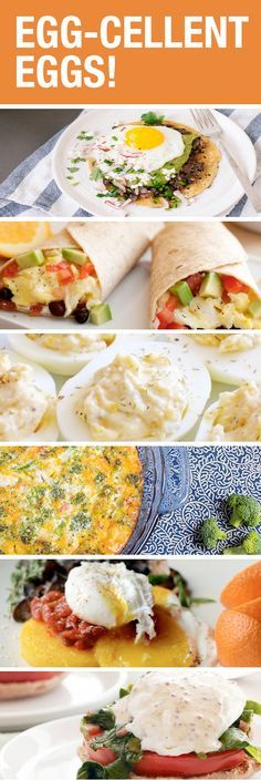 11 Incredible Egg Recipes