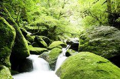 全部知ってる?米国CNNが選んだ『日本の最も美しい場所』31選 | RETRIP[リトリップ] Waterfall, Environment, Outdoor, Instagram, Outdoors, Waterfalls, Outdoor Games, The Great Outdoors