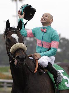 Jockey Mike Smith on Zenyatta Zenyatta Horse, Thoroughbred Horse, Clydesdale Horses, Breyer Horses, Barrel Racing Horses, Horse Racing, Beautiful Horses, Animals Beautiful, Horse Markings