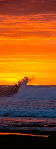 Jordy Smith surfs the spectacular sunset at Bells Beach. http://win.gs/1lPse9X Image: Trevor Moran #bellsbeach #jordysmith