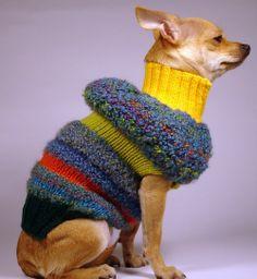 70 LOVE  luxury brand la bamba dog sweater