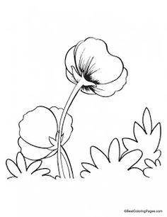 Poppy Coloring Pages   Kids coloring pages