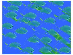 Fish Swimming from Amy Milam's Inexpert Collection