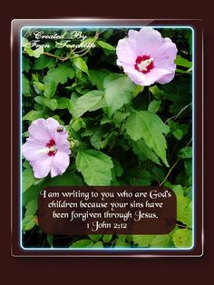 Bible Verse For Today, Bible Verses, Bible Forgiveness, Herbs, God, Children, Dios, Young Children, Boys