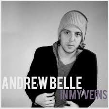 """in my veins"" - andrew belle"