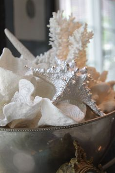 silver bowl filled with shells