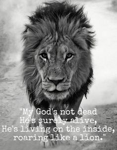 """""""Weep not: behold, the Lion of the tribe of Juda, the Root of David, hath prevailed"""" - Revelation 5:5  """"The wicked flee when no man pursueth: but the righteous are bold as a lion."""" - Proverbs 28:1 KJV"""