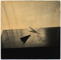 Paper planes _ Masao Yamamoto