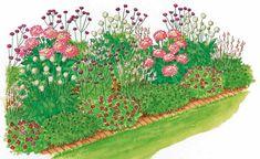 Mit ihrer Farben- und Formenfülle sind Dahlien beliebte Schmuckstück für jeden Garten – vor allem, wenn sie mit Begleitpflanzen malerisch arrangiert werden. Unser Beetvorschlag aus nur sechs verschiedenen Pflanzen ist einfach umzusetzen und verfehlt seine Wirkung nicht.