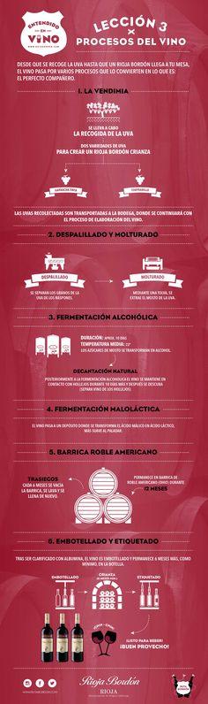 Procesos del vino rutabordon.com