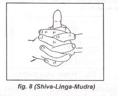 ENERGY POSTURE (SHIVA-LINGA-MUDRA): Method: this Mudra is achieved by intertwining the fingers of the two hands while raising the left thumb. Hands should be kept close to the chest. Benefits: By practicing for 1 to 5 minutes for 7 days, it is beneficial in controlling coughs, colds, asthma, paralysis, vibration, sinuses, and low blood pressure.