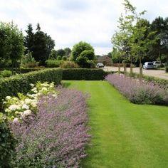 Tuinmeesters - projecten Front Elevation, Beautiful Gardens, Garden Plants, Garden Landscaping, Stepping Stones, Backyard, Landscape, Outdoor Decor, Gardening