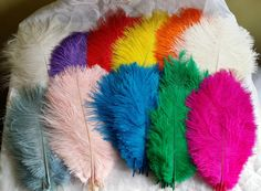 This is a natural product and the length of each feather will vary. They are available in quantities from 1 to 50 feathers, just use the drop down box to choose how many you require. | eBay!