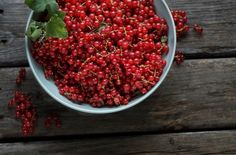 Red Currants for Red Currant Pie with Buttered Sourdough Crust (oh my!)