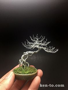 Exposed root wire bonsai tree by Ken To by KenToArt.deviantart.com on @DeviantArt