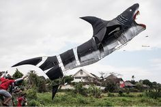 Shark Attack: A shark-shaped kite flew during the Bali Kite Festival in Indonesia. Kite Surf, Go Fly A Kite, Kite Flying, Kite Designs, Weather Warnings, Indonesian Art, Arte Popular, Shark Week, Go Outside