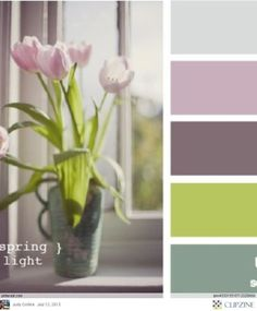 Color Palettes by Maca