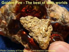 A wonderful ounce Alaskan Gold Nugget nestled on top of an Arizona Fire Agate gemstone carving. Rock Lobster, Agates, Chakra Stones, Agate Gemstone, Fossils, Rock Art, Geology, Minerals, Arizona