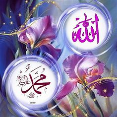 Islam Beliefs, Islam Quran, Allah In Arabic, Muhammed Sav, Allah Calligraphy, Allah Names, Mubarak Images, Islamic Images, Islamic Quotes