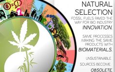 """Phase 3 Natural Selection We have found the SOLUTION that empower us all.  The Theory of Industrial Evolution describes various methods to achieve both bio and circular economies introducing a gradual shift from fossil fuels to organic products. Fueled by consumer transactions, lower cost materials such as bamboo and hemp; taking the """"green"""" question out of the consumer purchase is the success factor.  Welcome to the Evolution."""