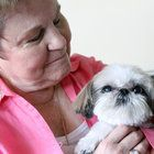While sitting on the lap of Pitman resident Nancy Granato, the tiny shih tzu suddenly starting circling around and gave a swift nudge directly to Granato's left breast. In that same spot, she found a lump that turned out to be cancerous.