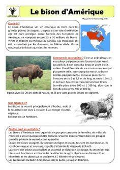 Le bison d'Amérique- fiche documentaire  #bisondamérique   #fichedocumentaire   #lecture