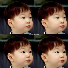 Daehanieee.... Korean Babies, Asian Babies, Cute Kids, Cute Babies, Song Il Gook, Triplet Babies, Superman Kids, Korean Tv Shows, Song Triplets