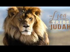 The Lion Is Roaring - YouTube. Watch Turkey!  They are very important at this very moment!  Wow! !!