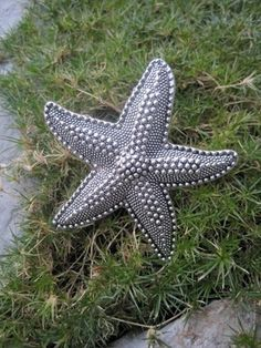 Metal Drawer Knob Dotted Starfish in Silver (MK114) | DaRosaCreations - Furniture on ArtFire