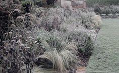Walled Garden - Amanda Patton