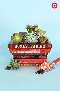 Soaking up all the knowledge a book has to offer gets a whole new meaning with this plantable library. Quick tip: Use a spray bottle to keep the books intact and your succulents looking fresh.