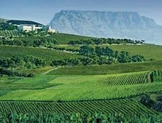 The Durbanville Wine Route on slow sundays #Durbanville #iLoveDurbanville