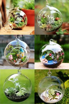 [Visit to Buy] New Transparent Ball Globe Shape Clear Hanging Glass Vase Flower Plants Terrarium Container Micro Landscape DIY Home Decoration #Advertisement
