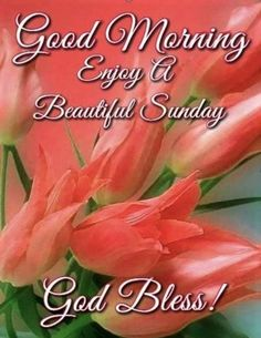 Blessed Sunday Morning, Sunday Morning Quotes, Sunday Wishes, Good Morning Sister, Morning Quotes For Friends, Happy Sunday Quotes, Funny Good Morning Quotes, Morning Blessings, Good Morning Greetings