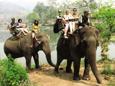 Asian Adventure Tour — Asia — Contiki Tours Elephant trail through the Luang Prabang forest April 2015