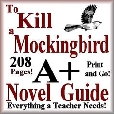how to kill a mockingbird answers