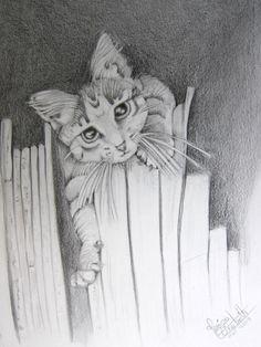 """boekenkat"""