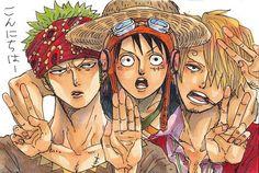 One Piece, Straw Hat Pirates, Luffy, Sanji, Zoro