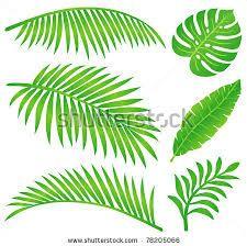 Image result for leaves images clip art