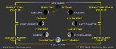 Progression of the Lunar Phases by Nick Anthony Fiorenza